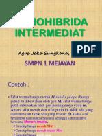2 Monohibrida Intermediat-2016 Pps - Copy