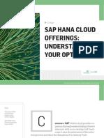 SAP HANA Cloud Offering