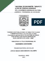 INSECTOS PLAGAS_Tara.pdf