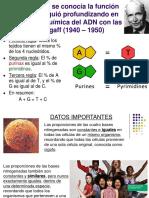 CIIIADN 3.pptx