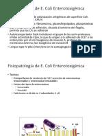 fisiopatología e coli