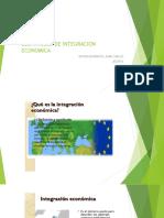 Desarrollo de Integracion Economica