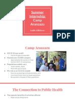 summer internship  camp aranzazu