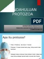 Pendahuluan Protozoa