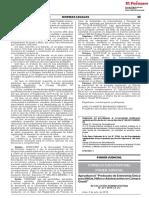 Perú Protocolo Cámara Gesell Jul2019