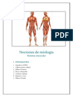387148165-Nociones-de-Miologia.docx