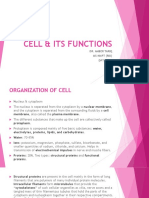 Cell & Its Functions