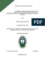INVESTIGACION_DE_MAIZ_2_DE_ELDER_MEZA.docx
