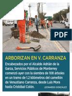26-07-19 Arborizan en V. Carranza