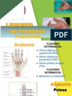 Lesiones Del Tendón Flexor