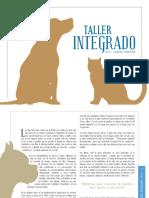 taller+integrado+2do+sem+2015