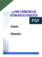 Anatomia Biomecanica Antropometria 1