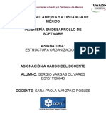 Asignación Estructura Organizacional