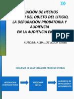 La Fijación de Hechos y Objeto Del Litigio - Depuración Probatoria - Sentencia
