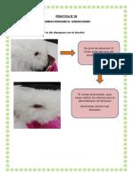 Practica 6 interacciones farmacodinamica
