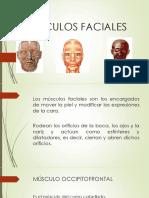 Musculos de La Mimica Facial