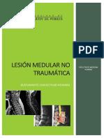 274600248-Lesion-Medular-No-Traumatica.docx