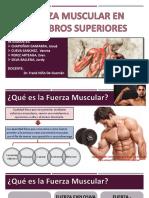 Fuerza Muscular en Miembro Superior