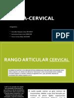 RA Cervical