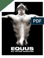 Equus Course Practice