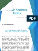 2.-Gestión-Ambiental-Pública.pdf