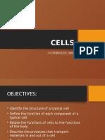 Cells Report