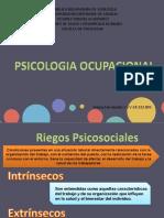 Psicologia Ocupacional
