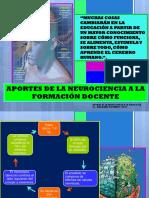 Aportes de la neurociencia a la pedagogía_Palomino Cueto Ana María .ppt