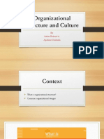 Organizational Structure and Culture (1)