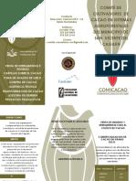 Información COMICACAO