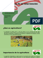 Agricultura de No Intervencion.