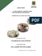 ESTUDIO_DE_CASO_OVINOS.pdf