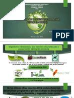 Francisco Gonzalez - Preservación y conservación Del Medio Ambiente