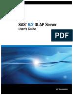 SAS Olap Server