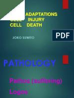Cellular Adaptation Injury Death D318 JSW