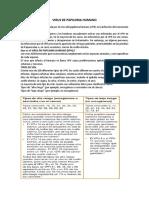 Virus de Papiloma Humano