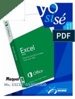 Manual MS Excel 2013 Avanzado