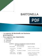 Barton Ella