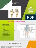 Sistema Oseo (1)