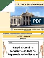 3. Pared abdominal. Topografía. Repaso tubo digestivo. 2018.pdf