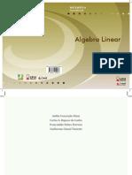 algebra linaer ead.pdf