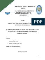 Bc-tes-3387 Alcantara Rojas - Figueroa Rojas