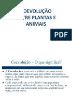 COEVOLUÇÃO ENTRE PLANTAS E INSETOS.ppt