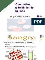 Clase 10 Tejido Conjuntivo Especializado Sangre y Medula Osea