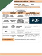 Formato de Planeacion Marzo 2019