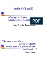 Fundamentals of Law(1)