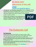 4. Ultrastr of the Cell