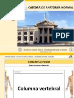Catedra de Anatomia UNR Craneo slide