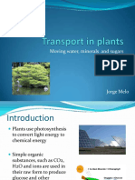 Factores Affecting the Rate of Transpiration