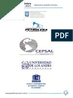 DIPLOMADO DE GEOPOLITICA PETROLERA.pdf